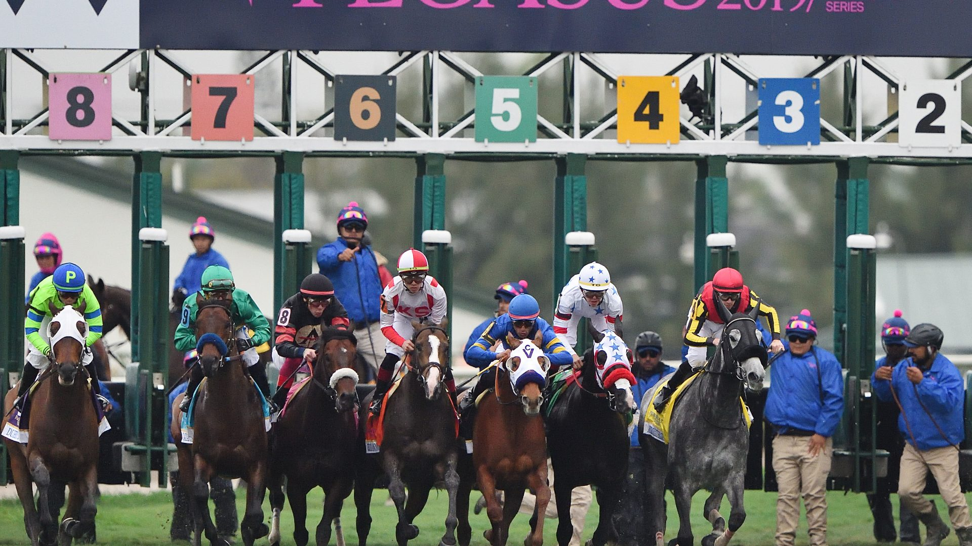 The Pegasus World Cup Turf start credit Tim Sullivan2